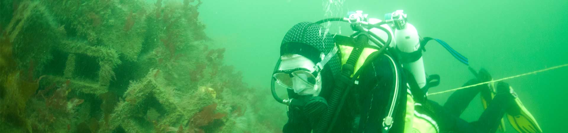 A diver surveying the artificial reef in Loch Linneh made from concrete bricks
